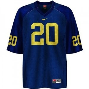 Michigan Wolverines Mike Hart #20 Blue Men Stitch Jersey Nike